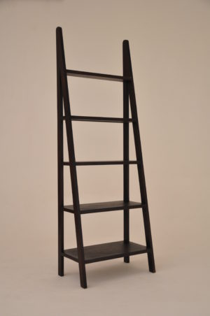 Teak Ladder Bookshelf